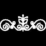 floral-curves