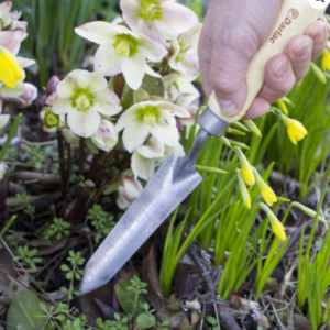 garden trowel