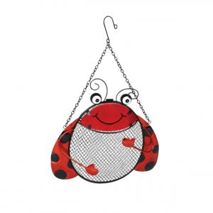 red ladybird feeder