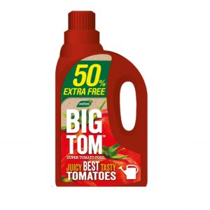 Big Tom Tomato Food