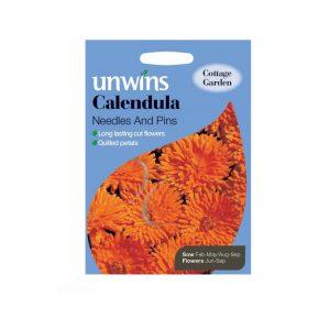 Calendula Needles and Pins