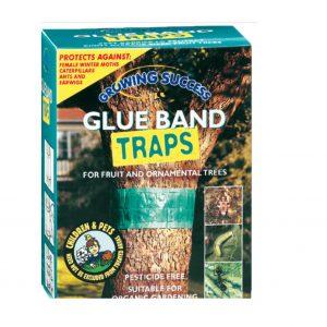Glue Band Traps
