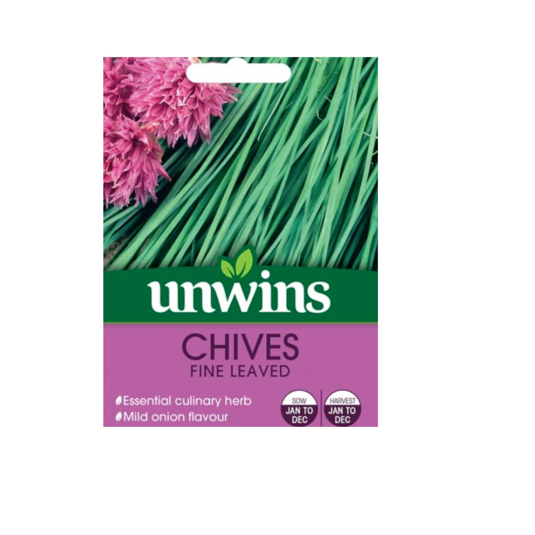 Fine Leaved Chive seeds