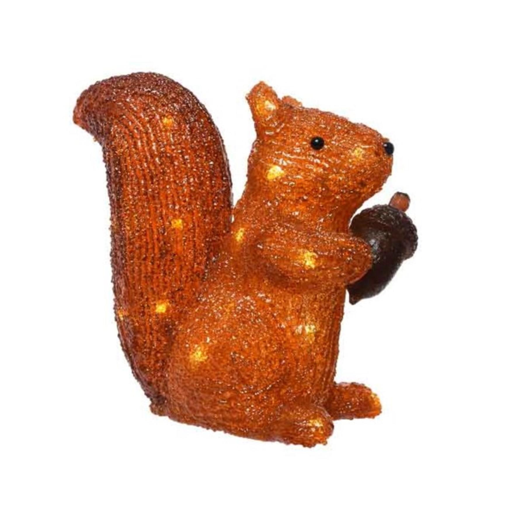 LED Acrylic Squirrel