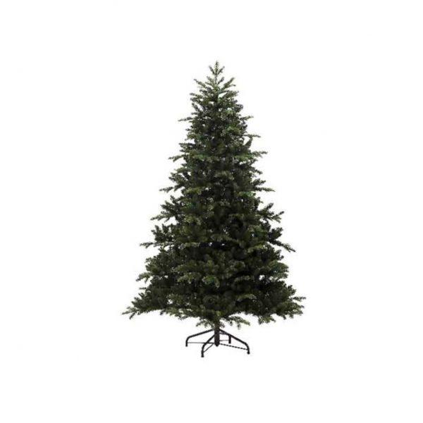 Noble Pine Tree
