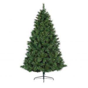 Ontario Pine Tree