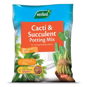 Westland Cacti & Succulent Potting Mix 4Ltr