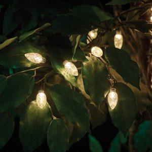 large bulb string light