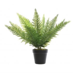 Artifical Fern in Pot