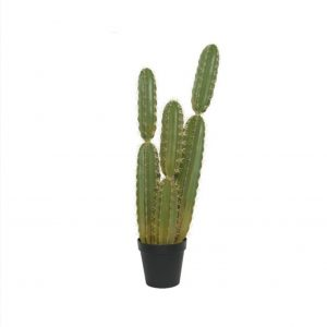 Artificial Cactus in Plastic Pot