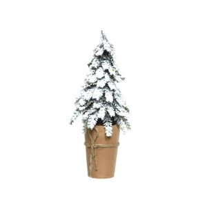 Christmas Tree In Paper Pot
