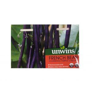French Bean ( Climbing Purple Cascade)