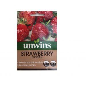 Strawberry ( Florian )