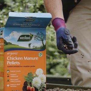 Chicken Manure Pellets