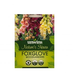 Foxglove ( Woodlanders )