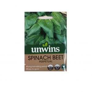 Spinach Beet ( Perpetual )