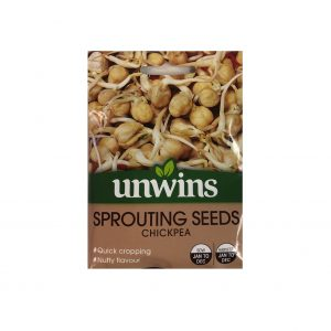 Sprouting Seeds ( Chickpea )