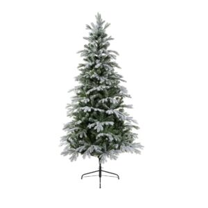 Sunndal Fir Frosted Tree